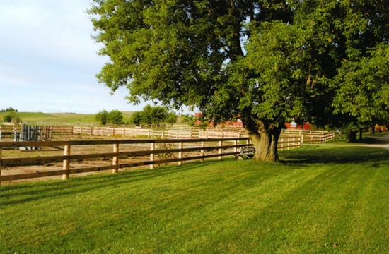 Fence Repair - Give Your Farm A Fresh Look