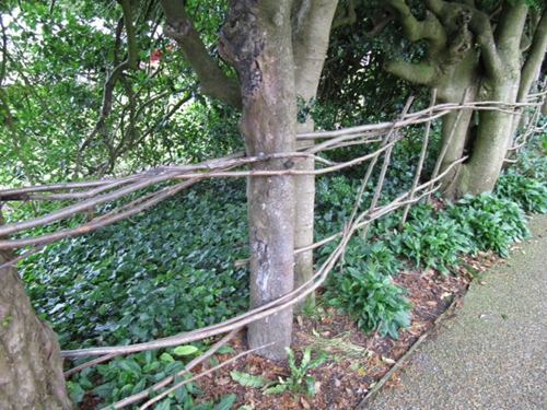 Choosing Fencing for Your Home 3